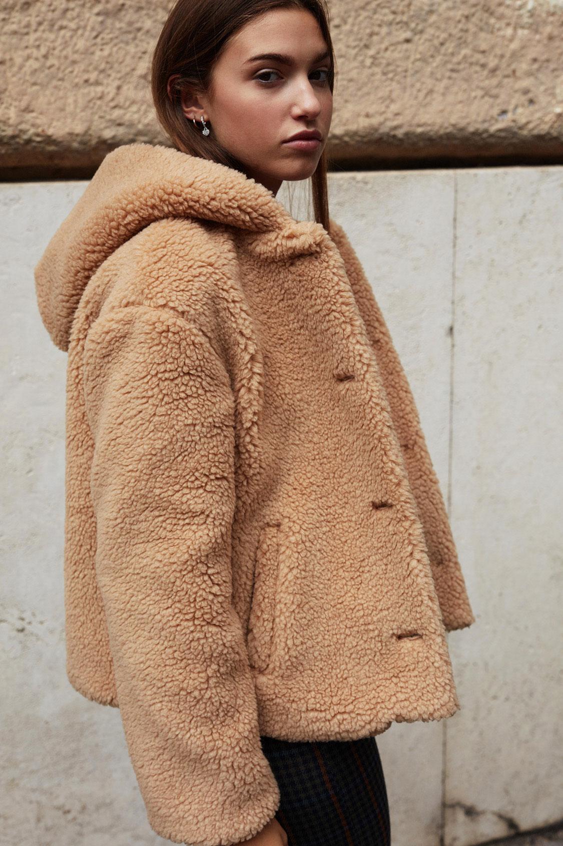Teddy bear hooded jacket